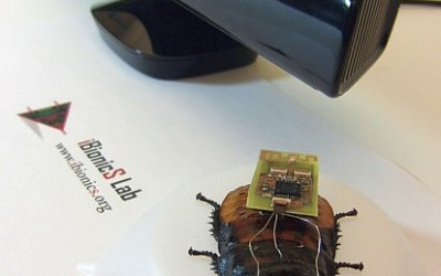 Dr. Bozkurt Uses Video Game Tech to Steer Roaches on Autopilot