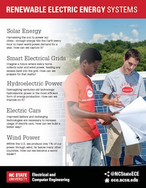 Renewable Electric Energy Systems