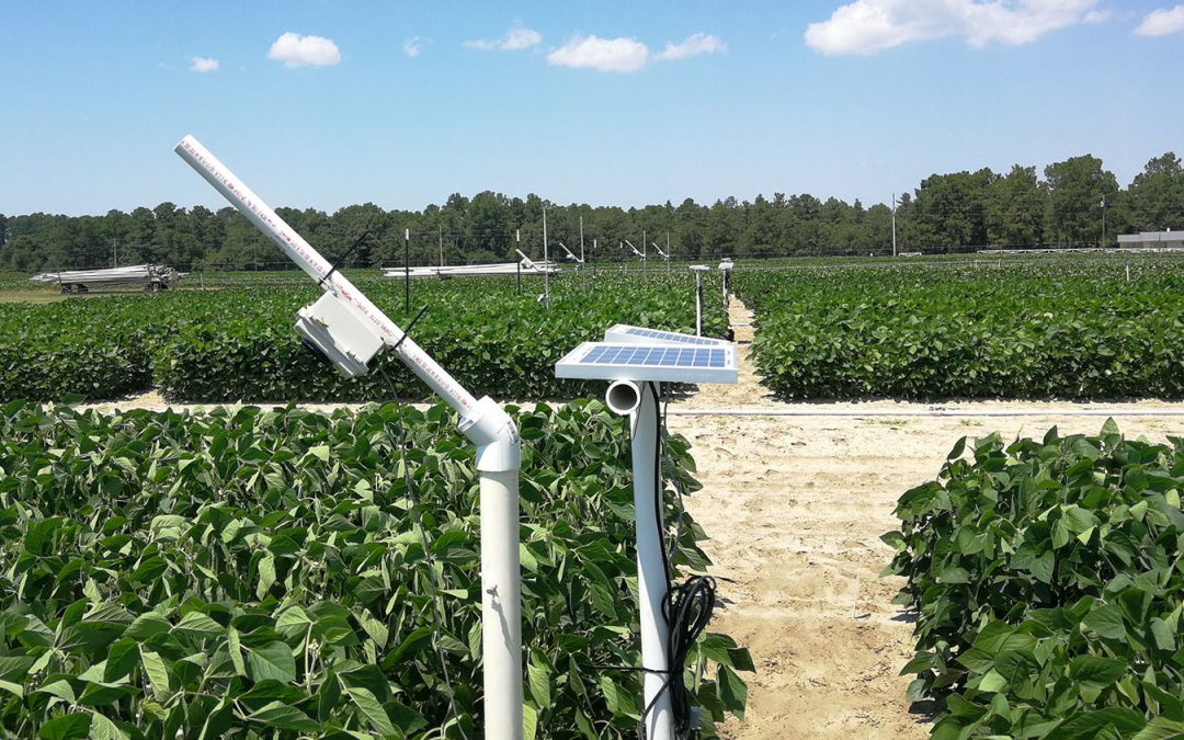 Low-Cost Cameras Could Be Sensors to Remotely Monitor Crop Stress